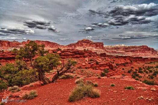 The Cool Color of Red Dirt by mjohanson
