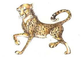 Cheetah for You by Meigas