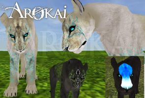 Arokai Feline Markings by Shplintah