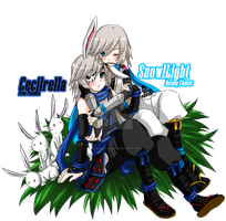 [Elsword] Cecilrella and SnowlLight [Costumes] by ChibiSalLina