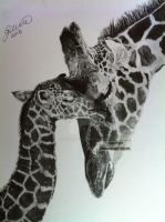 'Giraffe Parenthood' - 2013 - (Drawing) by Stevegillettart