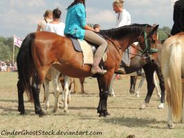 Hungarian Festival Stock 119 by CinderGhostStock