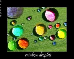 rainbow droplets by brat07