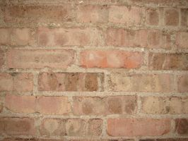Brick Wall Texture 2 by FantasyStock