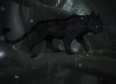 Pantherclaw in the Night by Vaporshine