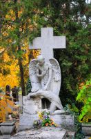 Cemetery at day 2 by Seth890603