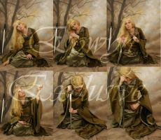eowyn set 2 by magikstock