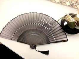 Folding fan by rainbowLU