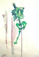 skeleton in  watercolour by bodeanpye
