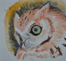 Eastern Screech Owl - Red Morph by whitekratoswolf