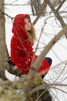 Red Ridding Hood 3 by Arty-Anna
