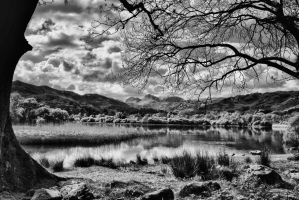 Langdale Pikes from Elterwater by Capturing-the-Light