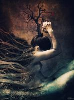 gaia by Peterio
