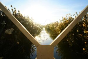 Canal From Bridge by cecphotography