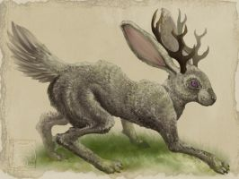 Commission - Jackalope by cooley