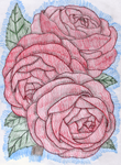 Roses by Miranthia