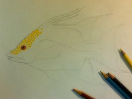 Hogfish .02 by scientificartist