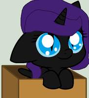 Nyx In A Box :D by PaintTasticPony