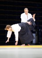 Aikido defence to Mae Geri by chavi-dragon
