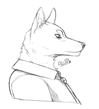 wolf dude by Aw0