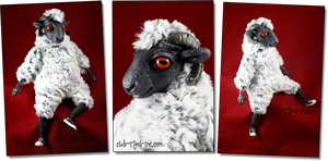 Mooore Sheep by SpankTB