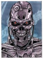 Terminator - T800 Endoskeleton by colemunrochitty