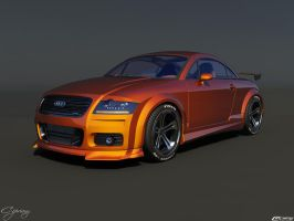 Audi TT tuned by cipriany