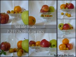 Still life fruits pack by Cat-in-the-Stock