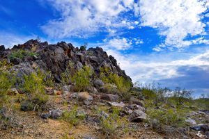 ThunderBird Hike 2 by Jonathan-Flash