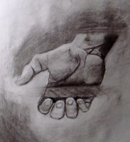 charcoal hand study by HeribertoMartinez