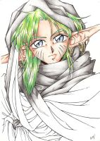Racoon elf - 1996 by fio