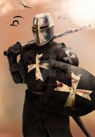 Elite: Hospitalier Knight by dmavromatis