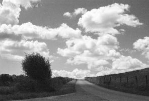 52 shades no. 7: Road to heaven by TLO-Photography