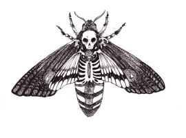 death's moth by Sanate