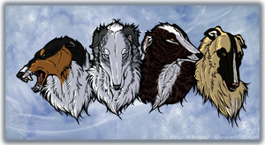 Borzoi quartet by Barguest