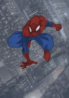 Spider-man 2013 by chadder96