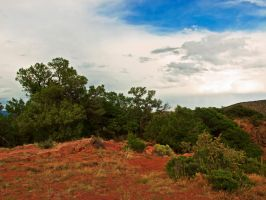 Red Earth and Trees by Gypsy-Stock