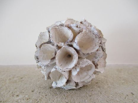 Wooden flower ball white by SlichoArt