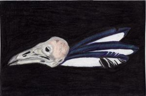 Magpie by CherokeeGal1975