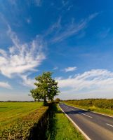 Road to York 2 by davepphotographer
