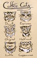 Coffee Cats by Khatoolah