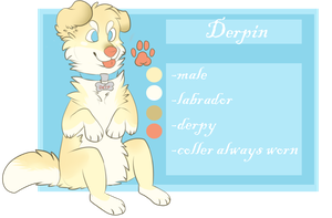 derpin ref by Chargay
