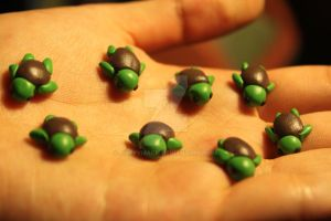 Polymer Clay Turtles (for sale) by Macherz