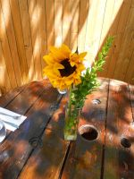 Sunflower In The Sun 2 by MarTiaNOverLorD