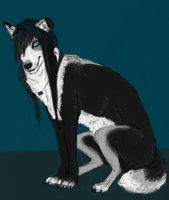 Draven by Sebone