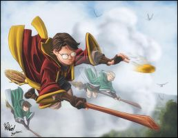 Harry Potter : Quidditch- by diabolumberto