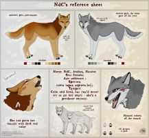 NdC reference sheet THE GREY ONE by NatalieDeCorsair