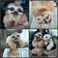 Baby Three-Toed Sloth - Handmade Poseable Creature by Heiditruth