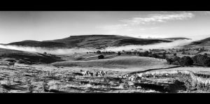 North Pennines - Pano by Wayman