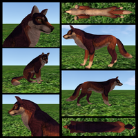 A-lpha1995 Adoptable1 by FlyWheel68